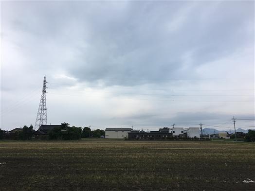 2017-05-17 06.51.51.jpg