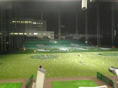 golfgarden-toyo.jpg