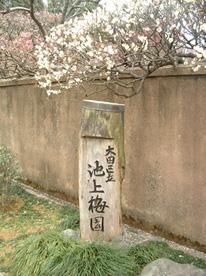 ikegamibaien00.jpg