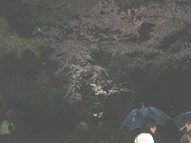 kenrokuen05.jpg