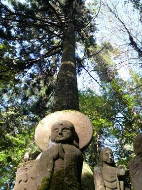 tachikue-08.jpg